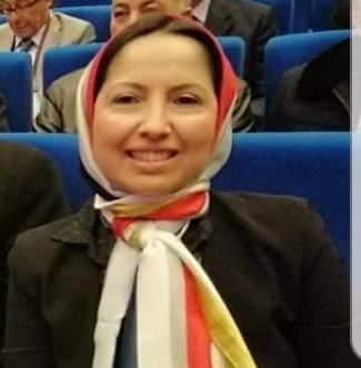 Prof-NourChaoui